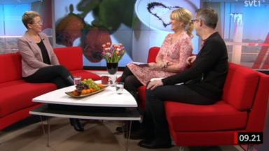 Gäst i Gomorron Sverige på SVT